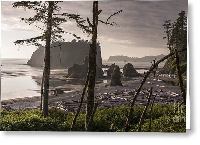 Ruby Beach Greeting Card