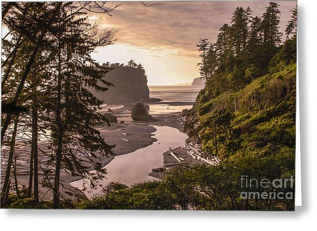 Ruby Beach Landscape Greeting Card