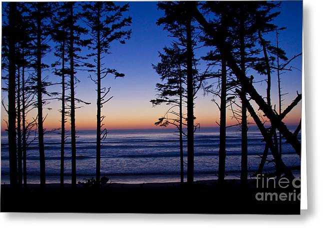 Ruby Beach Sillouette I Greeting Card by Dana Kern