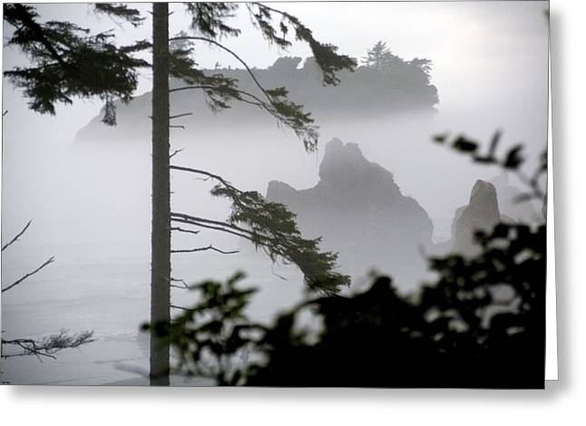 Ruby Beach Washington State Greeting Card by Greg Reed