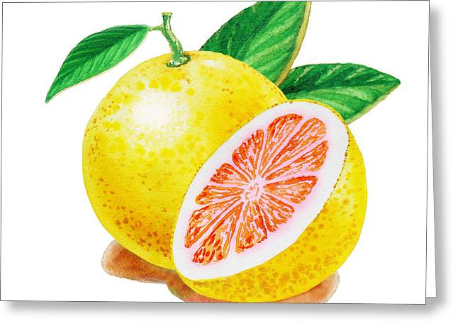 Ruby Red Grapefruit Greeting Card by Irina Sztukowski