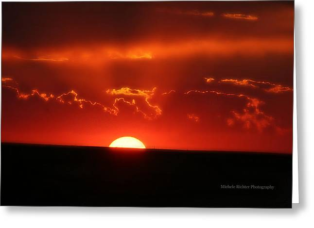 Ruby Red Greeting Card by Michele Richter