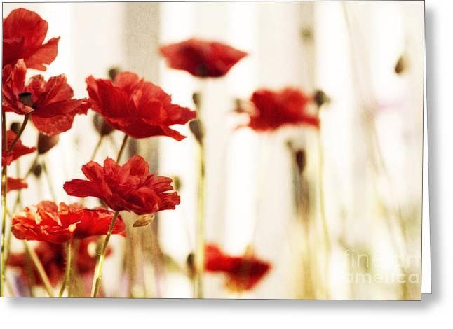 Ruby Reds Greeting Card by Priska Wettstein