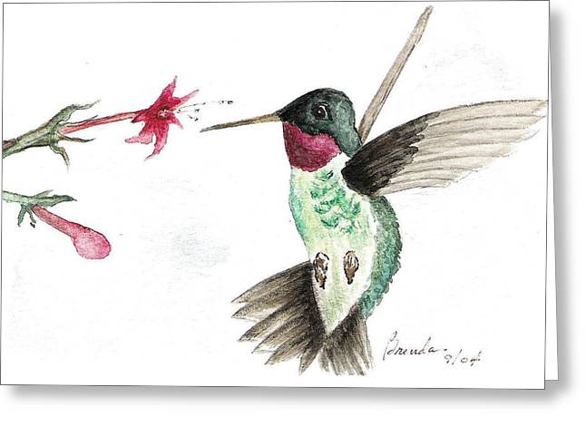 Ruby Throated Hummingbird Greeting Card by Brenda Ruark