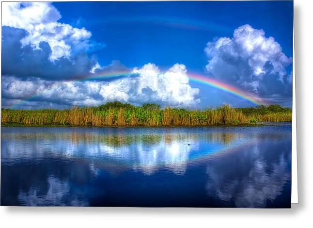 Rue's Rainbow Greeting Card by Mark Andrew Thomas