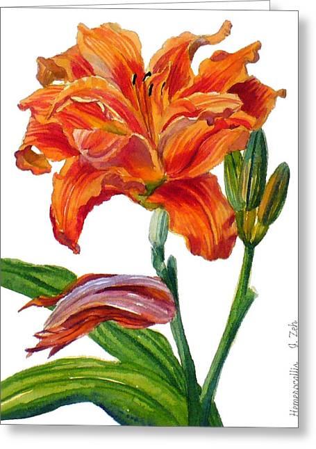 Ruffled Orange Daylily - Hemerocallis Greeting Card by Janet  Zeh