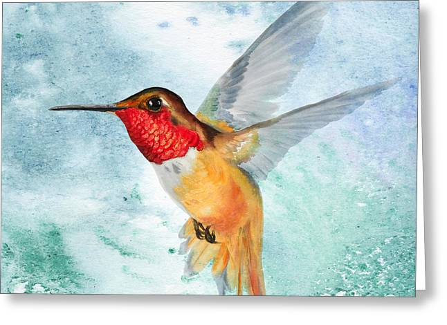 Da199 Rufous Humming Bird By Daniel Adams Greeting Card