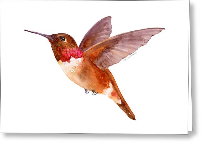 Rufous Hummingbird Greeting Card by Amy Kirkpatrick