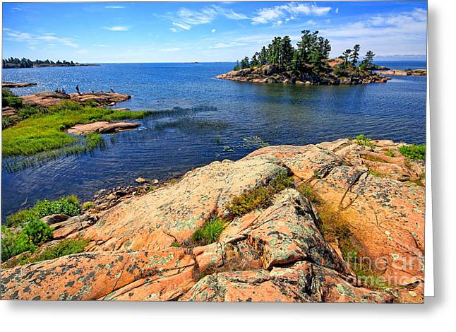 Rugged Beauty Greeting Card by Charline Xia