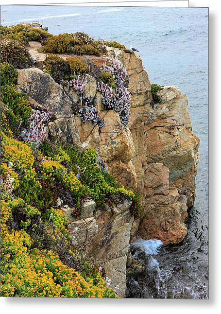 Rugged Cliff And Flowers As Cliff Greeting Card by Tom Norring