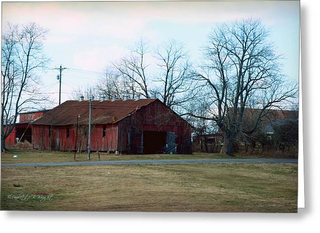 Rugged Shed II Greeting Card by Paulette B Wright