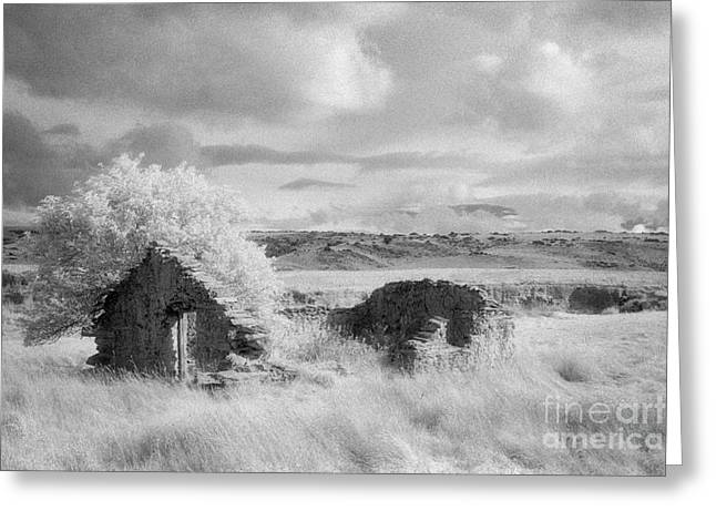Ruin Mount Ross Station Otago Greeting Card