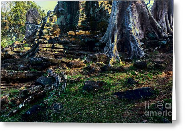 Ruins And Roots Greeting Card by Julian Cook