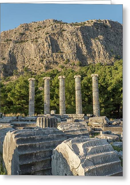 Ruins Of The Temple Of Athene Greeting Card by David Parker