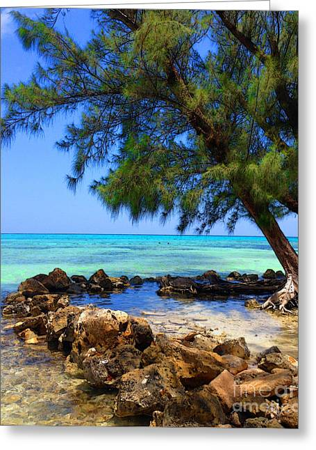 Rum Point Cove Greeting Card