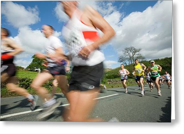 Runners In The Windermere Marathon Greeting Card by Ashley Cooper