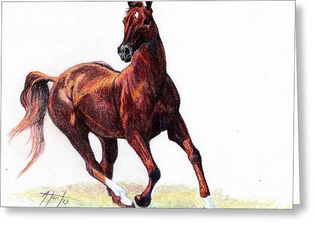 Running Free Greeting Card by Audrey Van Tassell