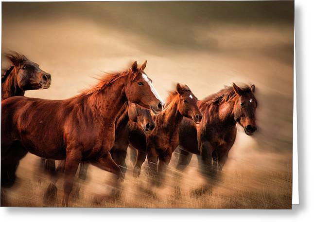 Running Horses, Blur And Flying Manes Greeting Card