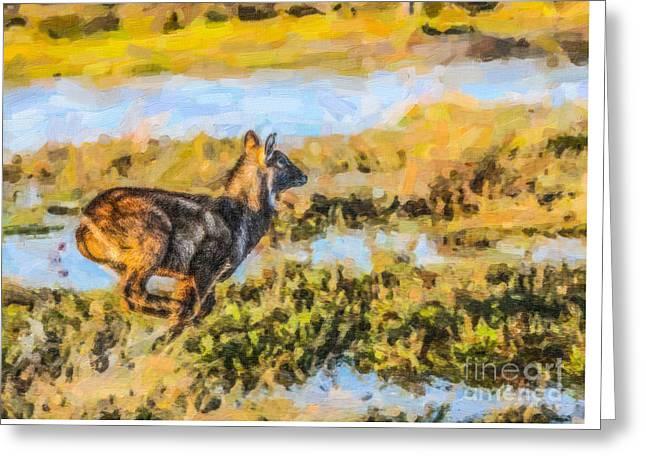 Running Waterbuck Greeting Card by Liz Leyden