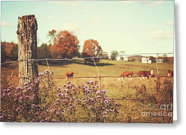 Rural Country Scene Greeting Card by Sandra Cunningham