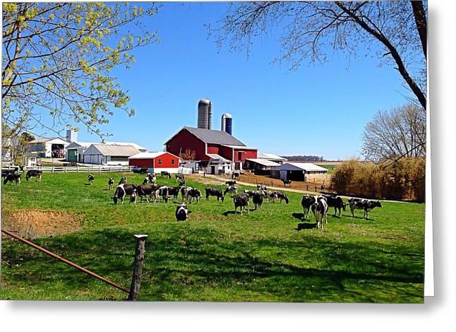 Rural Farm Greeting Card