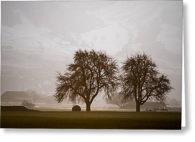 Greeting Card featuring the photograph Rural Landscape #4 by Antonio Jorge Nunes