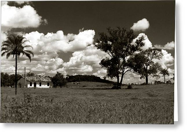 Greeting Card featuring the photograph Rural Landscape by Amarildo Correa