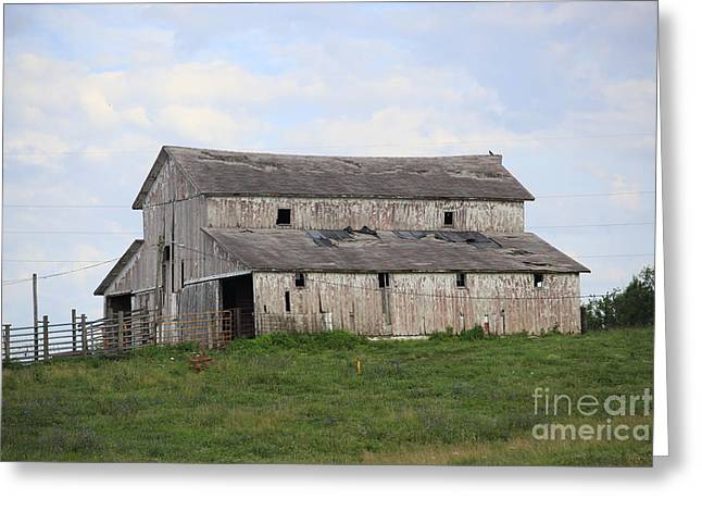 Rural Moravia Greeting Card by Anthony Cornett