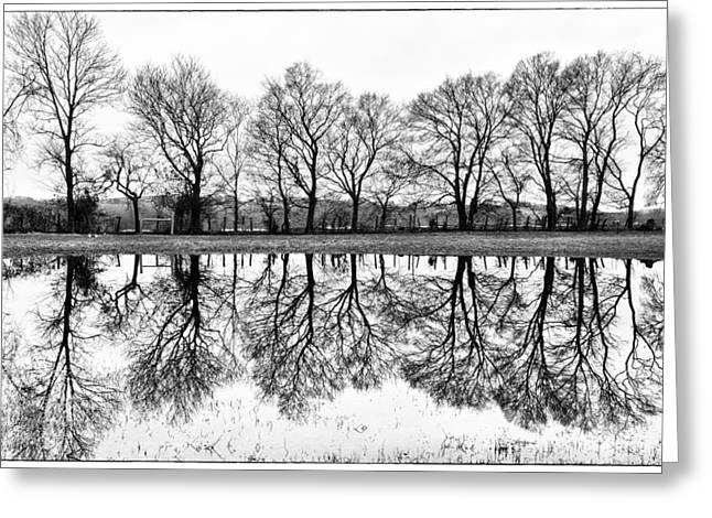 Rural Reflections Greeting Card by Ron Plasencia