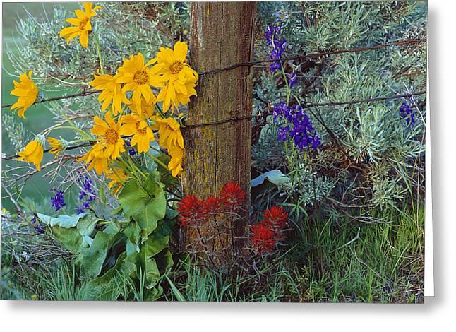 Rural Spring Greeting Card by Leland D Howard