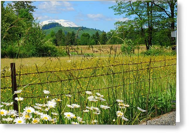 Rural Springtime  Greeting Card by Mamie Gunning