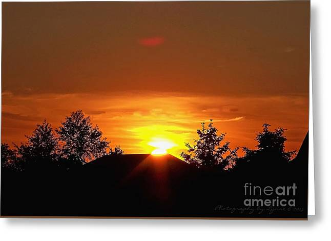 Greeting Card featuring the photograph Rural Sunset by Gena Weiser