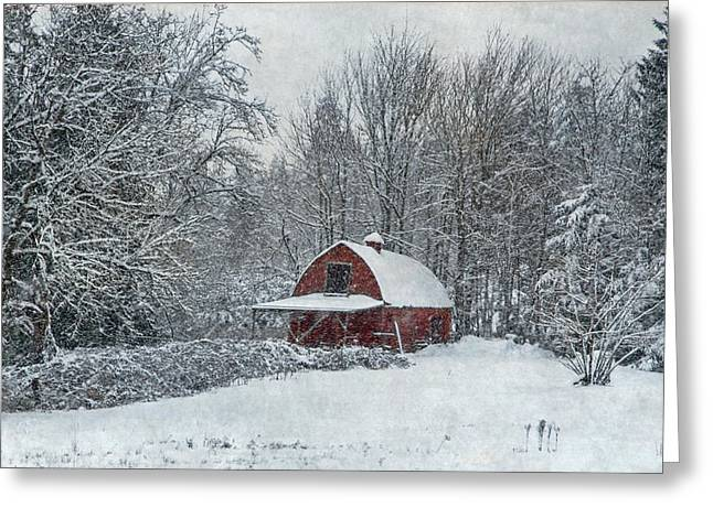 Rural Winter Greeting Card by Angie Vogel