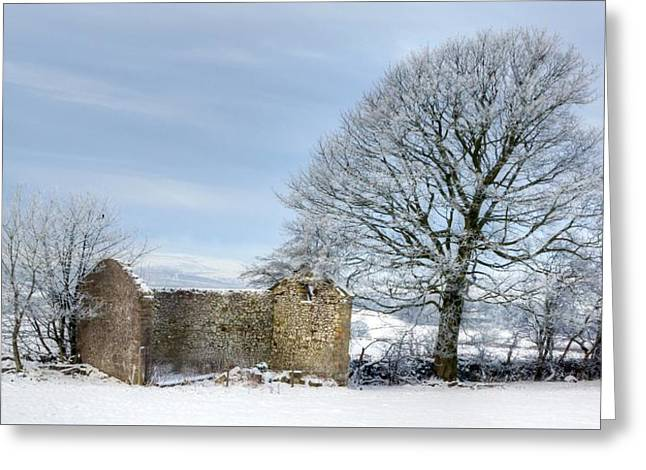 Rural Winter Greeting Card by David Birchall