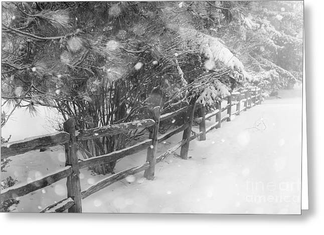 Rural Winter Scene With Fence Greeting Card by Elena Elisseeva