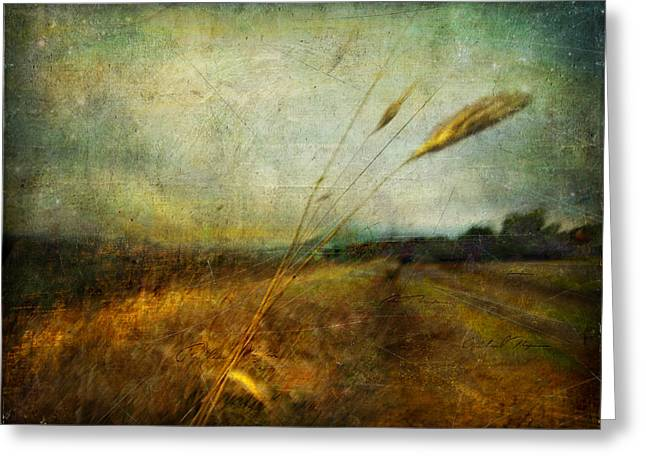 Ruralscape #19. The Victory Of Silence Greeting Card by Alfredo Gonzalez