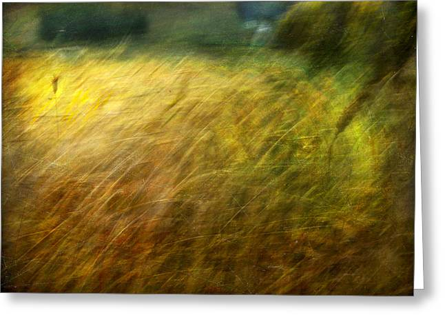 Ruralscape #8. Field And Wind Greeting Card by Alfredo Gonzalez
