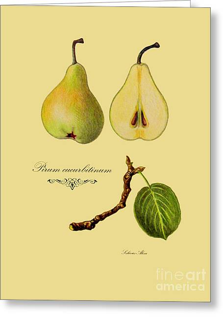 Russet Pear Greeting Card