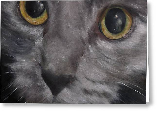 Russian Blue Greeting Card by Cherise Foster