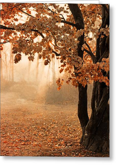 Rust Apricot Orange Maple Autumn Sunrise Greeting Card by Brooke T Ryan