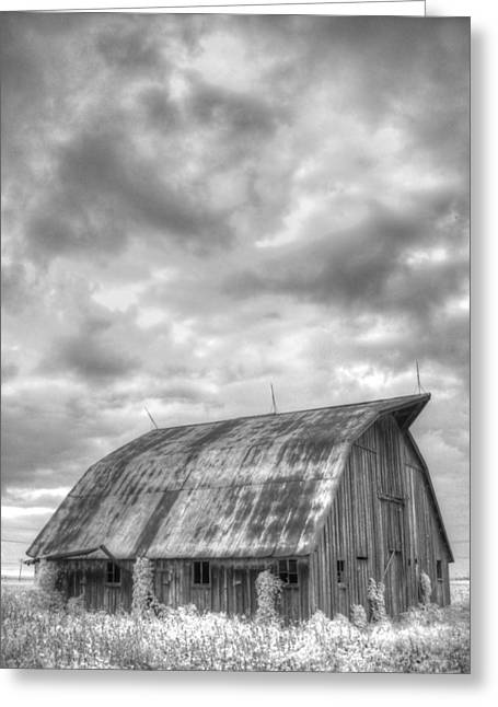 Rustic Barn Greeting Card by Jane Linders