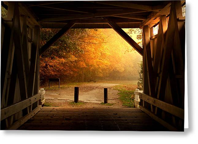 Rustic Beauty Greeting Card by Rob Blair