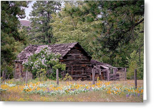 Rustic Cabin In The Mountains Greeting Card by Athena Mckinzie