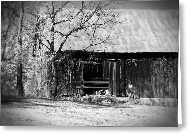 Rustic Tennessee Barn Greeting Card by Phil Perkins