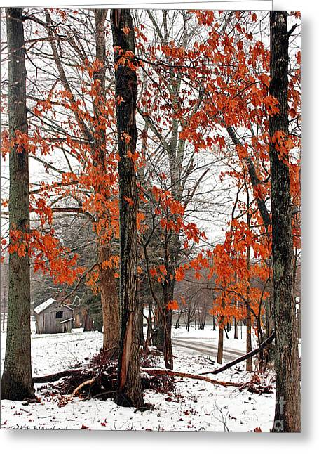 Greeting Card featuring the photograph Rustic Winter by Todd Blanchard