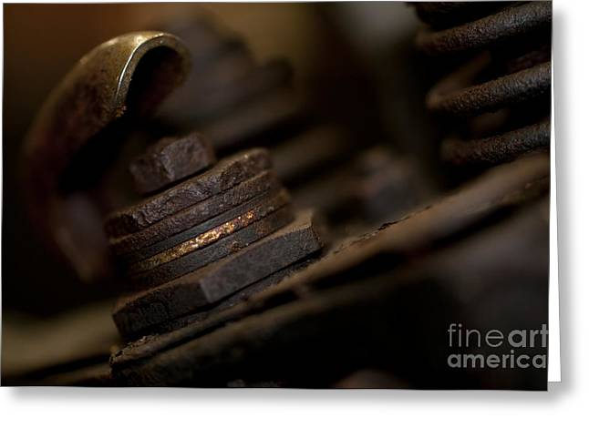 Rusty Nuts Bolts Washers Greeting Card by Wilma  Birdwell