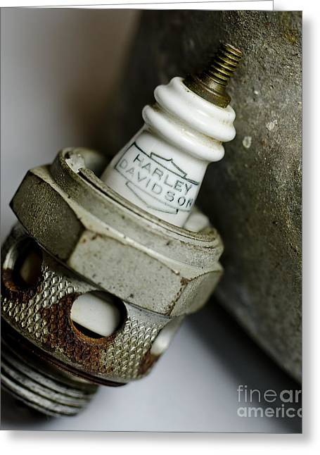 Rusty Old Spark Plug  5  Greeting Card by Wilma  Birdwell