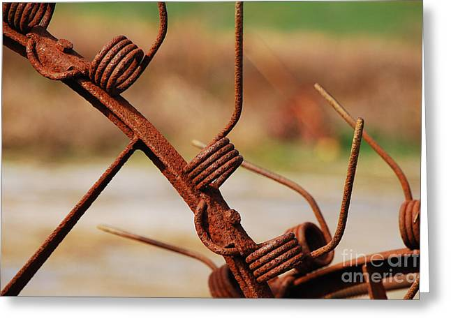 Rusty Tines Greeting Card by Mary Carol Story