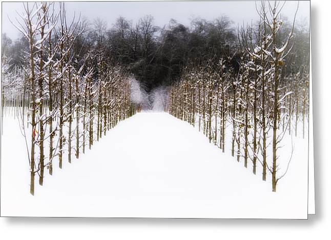 Greeting Card featuring the photograph Ruths Winter Scene by Russell Styles