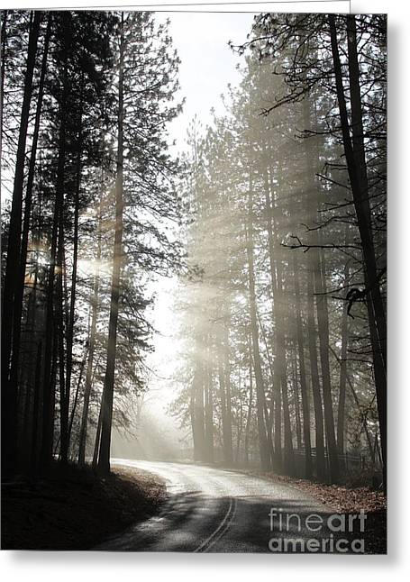 Rutter Parkway Fog Greeting Card